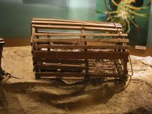Lobster Pot, Round-top Wood